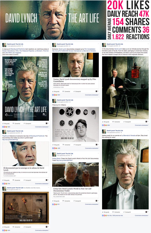 Lynch FB Insights